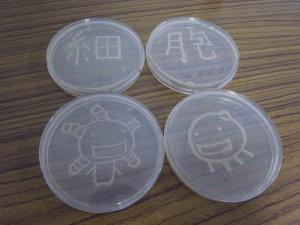 寒天培地の上に酵母で文字とイラストを描く。